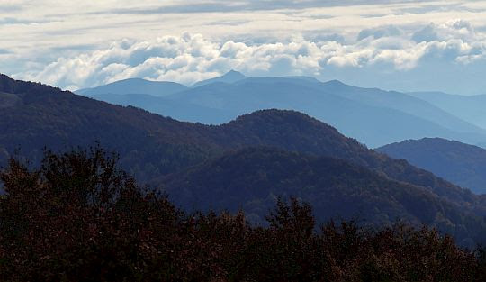 Widok w kierunku Pikuja, najwyższego szczytu Bieszczadów.