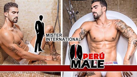 Mister International Spain 2017
