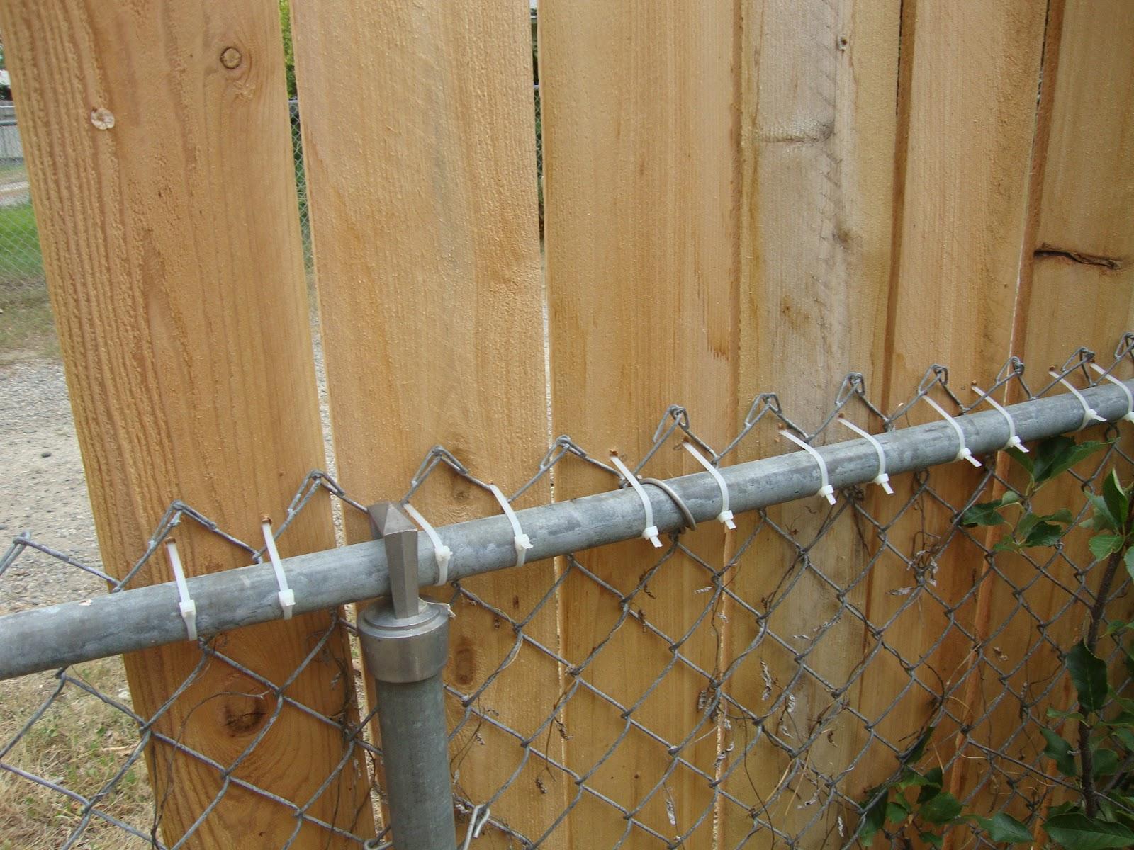 Garden Walk Buffalo Through The Garden Gates 6: Creative Healings: Zip Tie Cedar Fence And Walk In Chicken