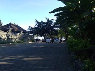 Bali Dolphin Tour