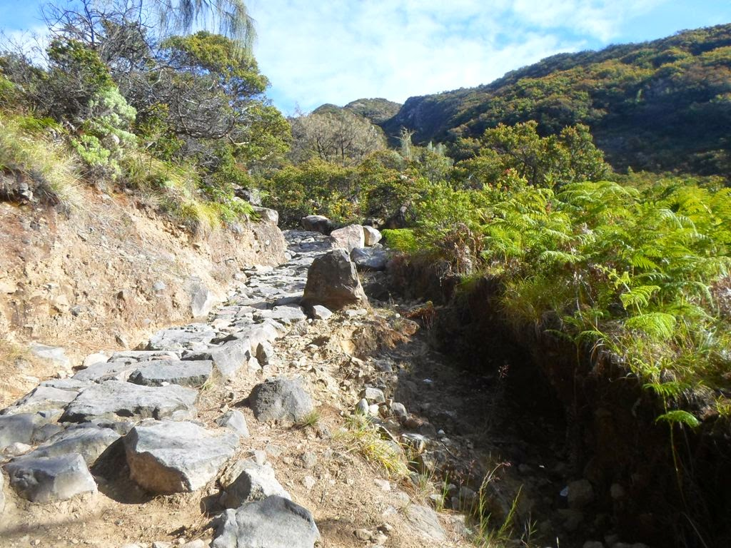jalur pendakian gunung welirang