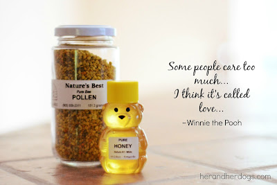 Honey, a Winnie the Pooh Quote and how it can naturally help dog's with allergies
