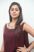 Nikki Galrani in a Brown Shining Sleeveless Gown at Nakshatram music launch ~  Exclusive 007.JPG