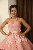 Catherine Tressa looks super cute in strapless sleeveless deep short dress at 64th Jio Filmfare Awards South ~  Exclusive 210.JPG