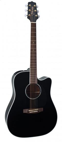 guitar Takamine EG341C