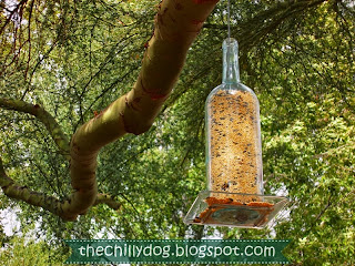 DIY Tutorial: How to make a bird feeder out of an empty wine bottle by The Chilly Dog