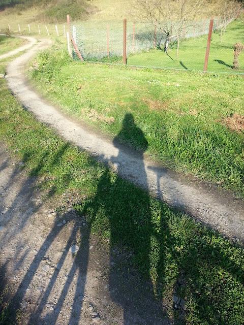 Sombra con bici