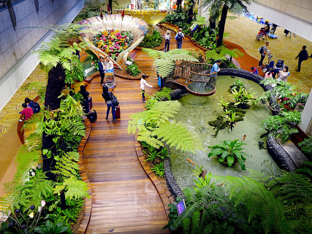 expats guide to singapore changi airport