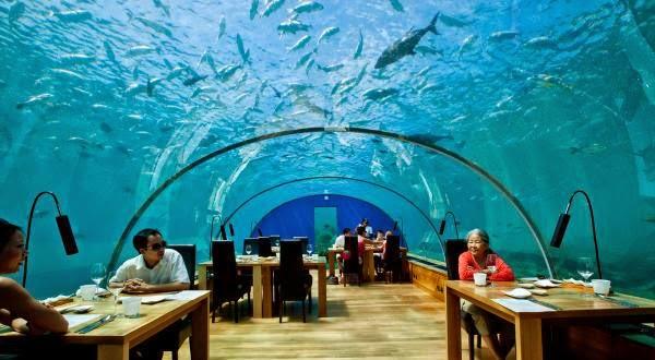 Restaurantes que todos querem entrar para comer! Nem todos podem