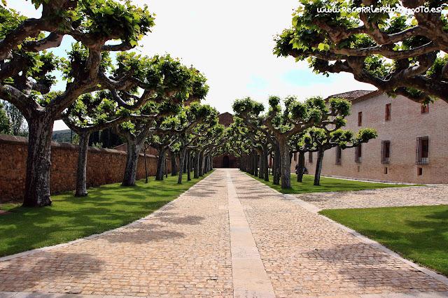 Paseo monasterio de Veruela
