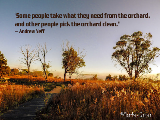 'Some people take what they need from the orchard,and other people pick the orchard clean'- Andrew Neff