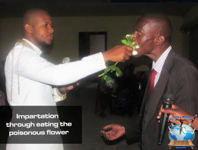 Controversial S.A pastor feeds church members with poisonous flower,cockroach