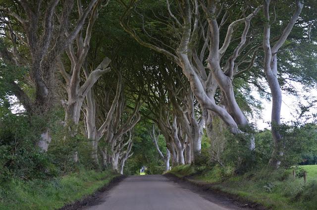Estrada que ficou famosa por ser cenário de Game of Thrones