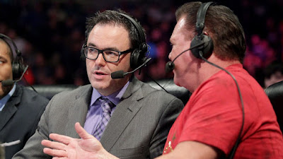 WWE Commentator Speaks Out About Bipolar Disorder