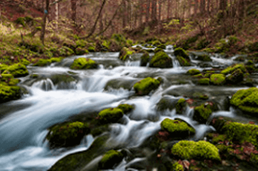 Android Iphone Natural beauty HD Wallpaper