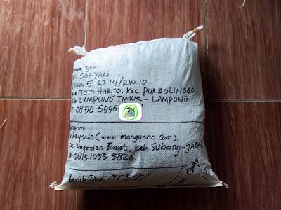 Benih Padi Pesanan  ABU SOFYAN Lampung Timur, Lampung  Benih Sesudah di Packing