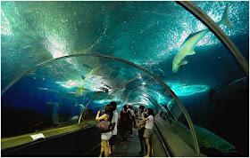 Objek Wisata Underwater World Langkawi Malaysia