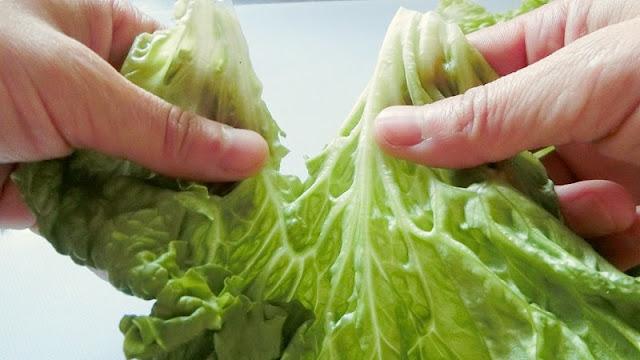 リーフレタスは包丁で切らずに手でちぎることで変色防止になる