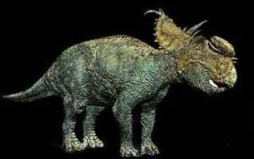 pachyrhinosaurus vs carnotaurus - photo #4