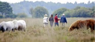 Park Limburgse Peel Wettervorhersage