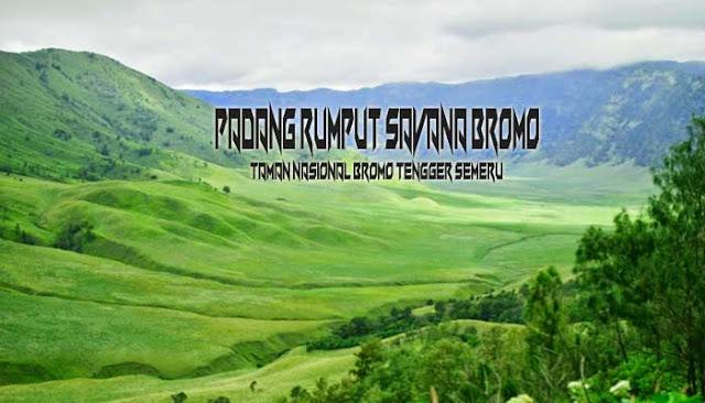 Padang Rumput Savana Bromo