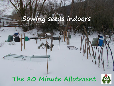 Sowing seeds indoors 80 Minute Allotment Green Fingered Blog