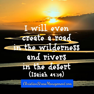 God will create a road in the wilderness and rivers in the desert (Isaiah 43:19) for me.