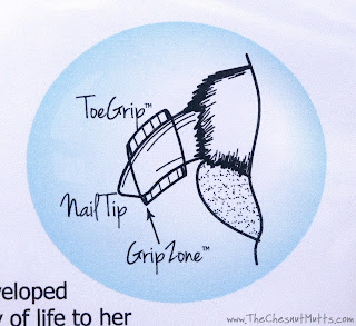Diagram showing the ToeGrip, nail tip, and GripZone