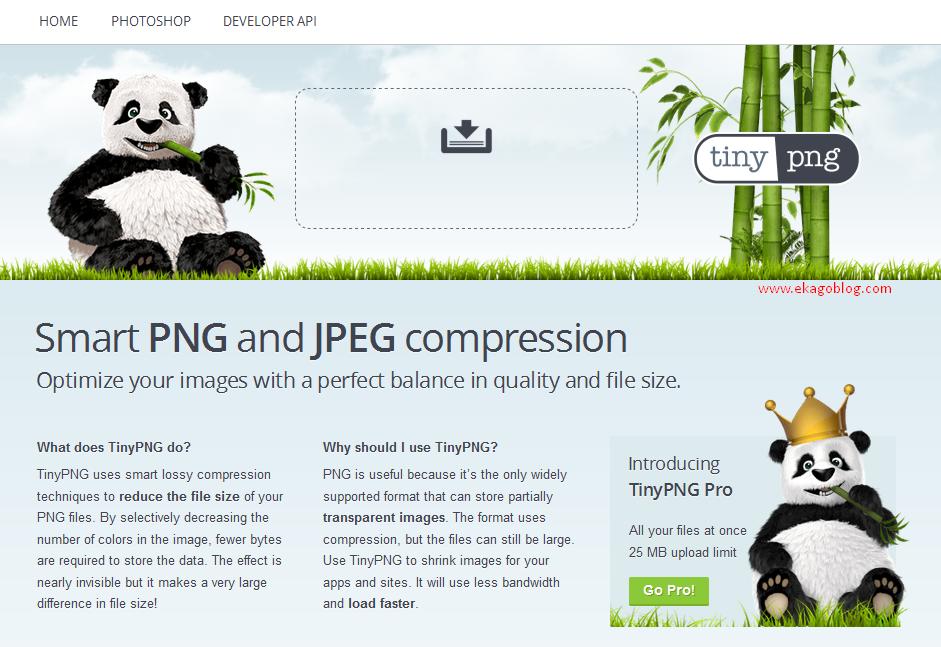 Solusi Memperkecil Ukuran Gambar Dengan Tinypng