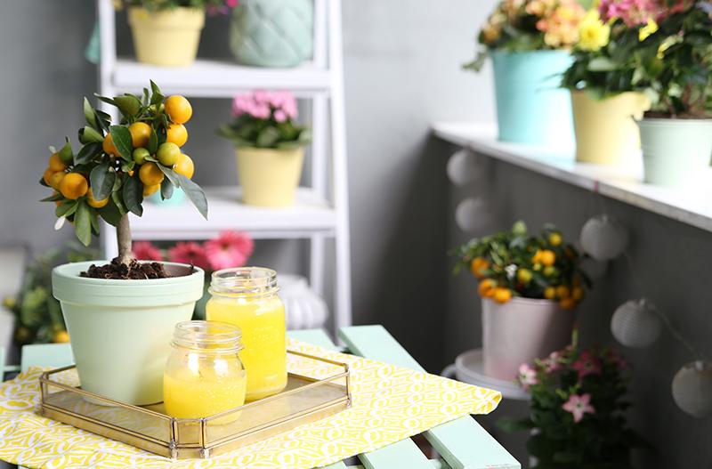 Diy} citronella kerzen & balkon in mint und gelb   mein feenstaub ...