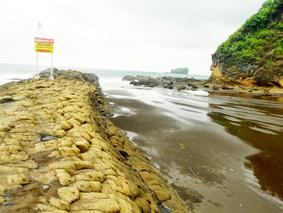 merupakan wisata pantai kerikil yang populer di pantai di daerah jember jawa timur dikenal  Tempat Wisata wisata pantai watu ulo ( kerikil ular ) di jember jawa timur