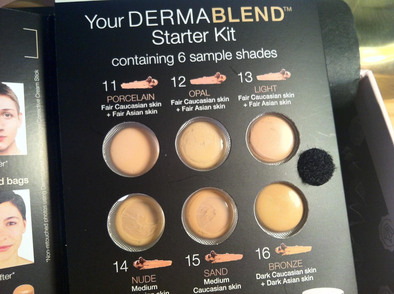 Pin Vichy Dermablend Cream Stick 11121314151617 On Pinterest