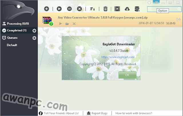 Download EagleGet 2.0.4.12 Stable Terbaru Free