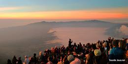 wisata Bromo hanya 275K per orang dari kota Malang