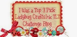 Top 3 - Ladybug Craft Ink