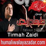 http://www.humaliwalayazadar.com/2013/06/tirmah-zaidi-nohay-2011-2013.html