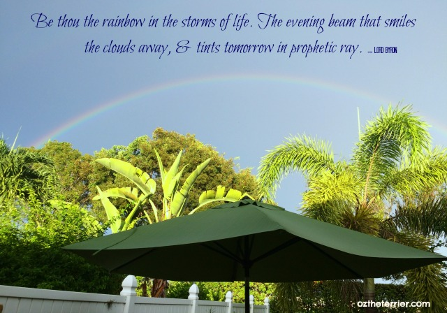 Be the rainbow in the storms of life - rainbow in our backyard