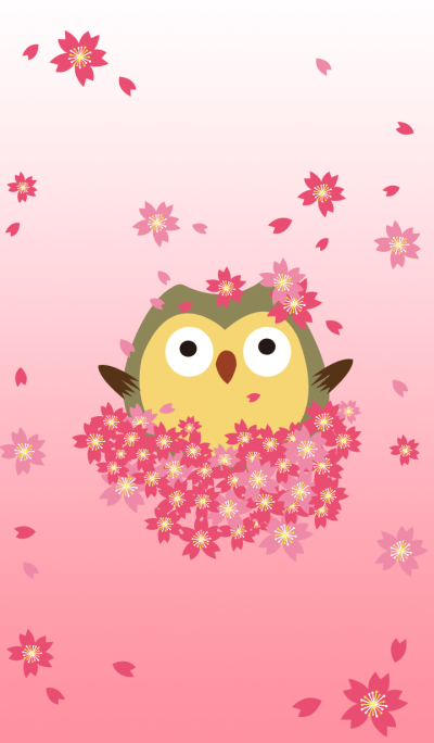 OWL's Live about appreciate the flowers
