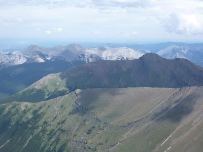 Mt Allen