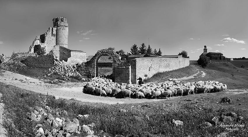 Paradilla del Alcor castillo