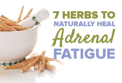 7 Herbs to Naturally Heal Adrenal Fatigue