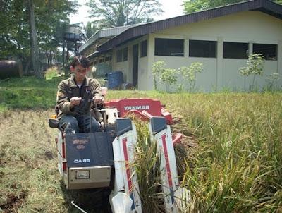 Alat perontok padi modern