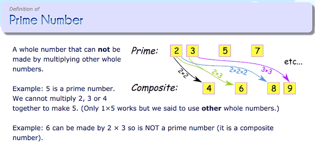 Definition of prime number. Maths year 6
