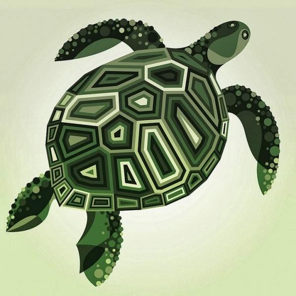 tortuga retoque digital dibujo por computadora