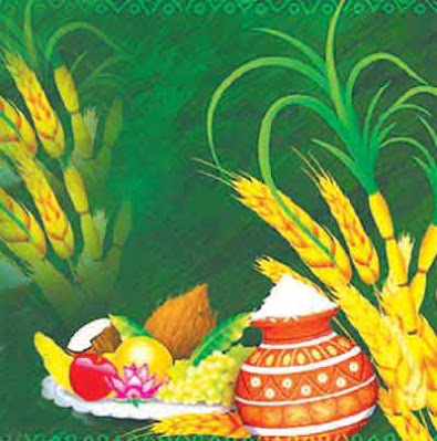 Pongal Quotes – Thoughts and sayings on Pongal