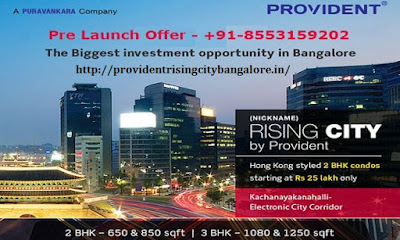 Provident Rising City Contact