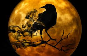 Stock photo - black crow on orange Halloween full moon