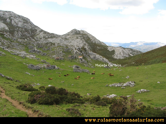 Ruta al Cabezo Llerosos desde La Molina: Camino de la majada Ceribios a la majada Jascal