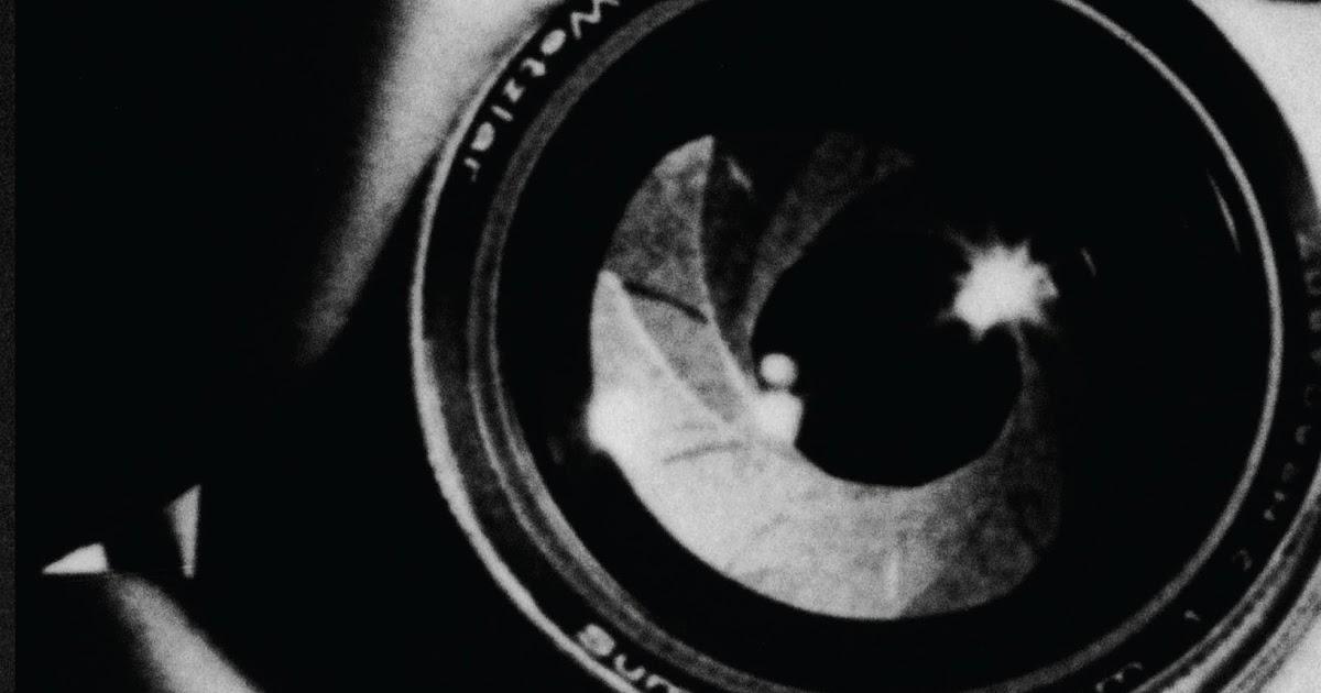 Arquivo de Susan Sontag - A MULHER QUE AMA LIVROS