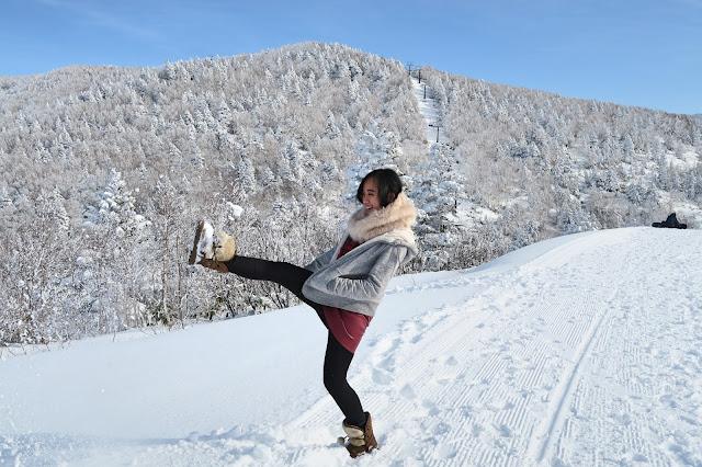 Powder snow Japan